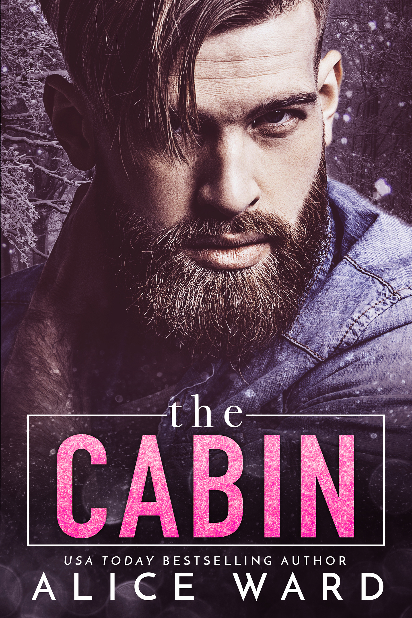 The-Cabin-Kindle